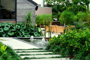 water feature and planting in outdoor landscaping